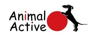 Ośrodek Rehabilitacji Zwierząt Animal Active we Wrocławiu oraz w Warszawie